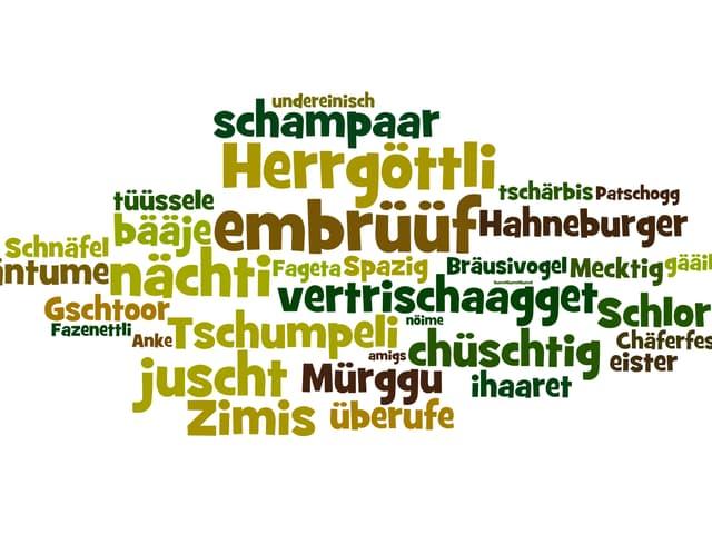 «Wort-Wolke» aus schweizerdeutschen Begriffen wie «Herrgöttli» oder «Mürggu»