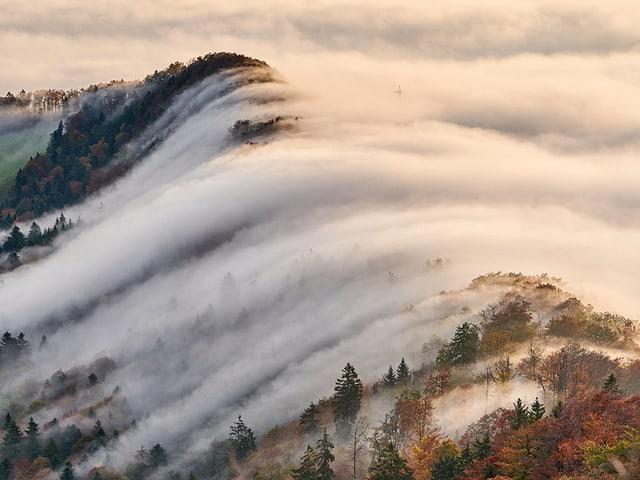 Der Nebel aus dem Mittelland fliesst nach Norden ins Rheintal.