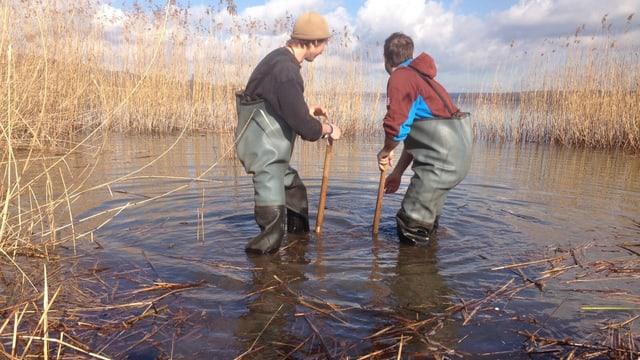 Zivildienstleistende arbeiten an einem See.