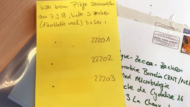 gelber Brief mit drei aufgeklebte Zecken