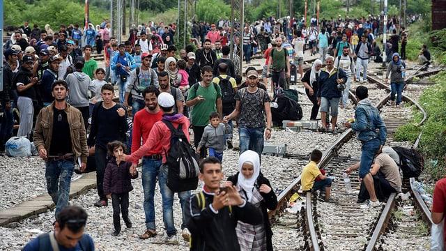 Migranten an der mazedonischen Grenze.