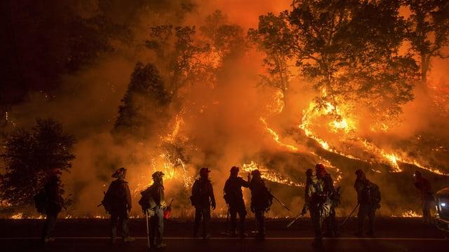 Feuerwehrmänner vor einem brennenden Hügel