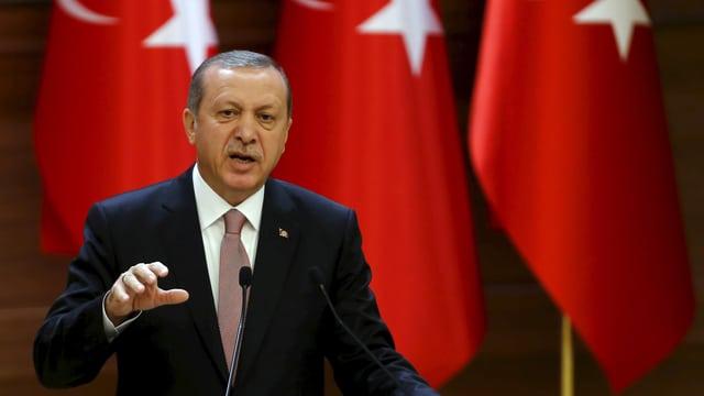 Der türkische Präsident gestikuliert während einer Rede. (reuters)