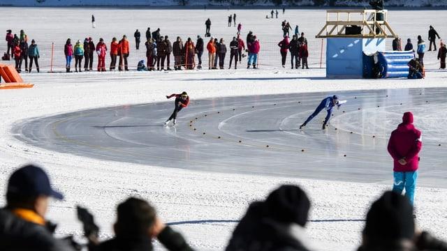 Kufen gleiten, Muskeln arbeiten: Fast scheinen die Eischnellläufer über das Eis zu fliegen.