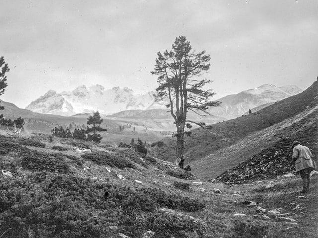 Moorenlandschaft, im Hintergund sieht man Berge mit vom Schnee weiss gefärbten Spitzen. Am linken Bildrand steht ein Mann, der sich zum Boden beugt, wie um etwas genauer zu betrachten.