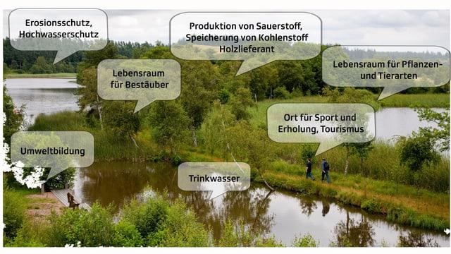 Grafik zu Ökosystemleistungen
