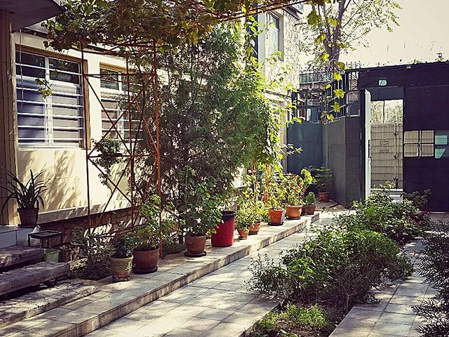 Innenhof mit Pflanzen.