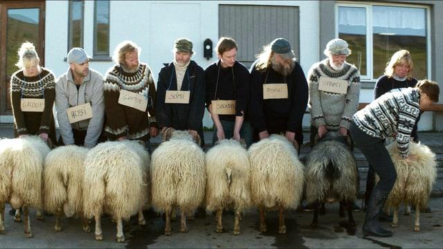 Männer stehen in einer Reihe, vor jedem steht ein Schafbock (den Hintern gegen die Kamera gestreckt).