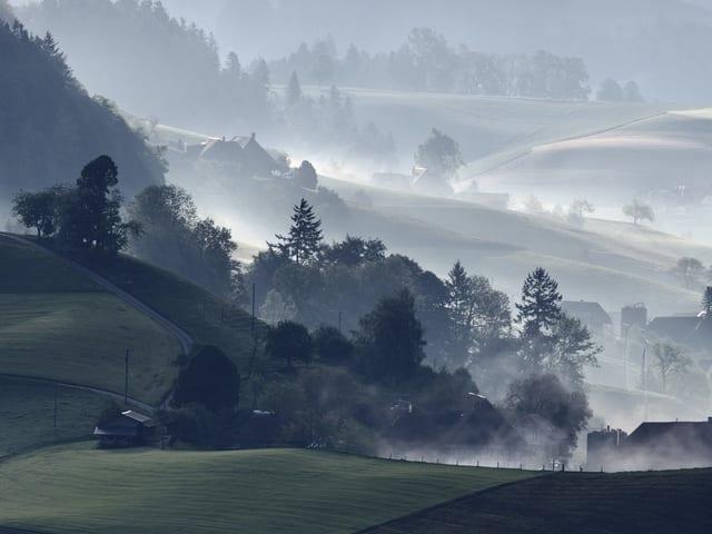 Nebelschwaden ziehen durch die Landschaft im Emmental.