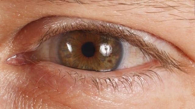 Das Bild zeigt ein Auge des Models.