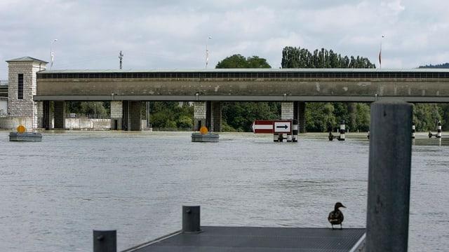 Hochwasser und randvolle Aare bei der Schleuse Port. (Archivbild)