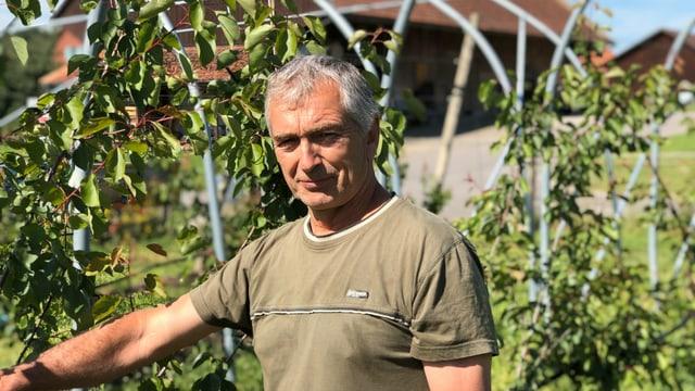 Aprikosenbauer Werner Stadler aus Langrickenbach