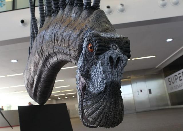 Der Dinosaurier Bajadasaurus.