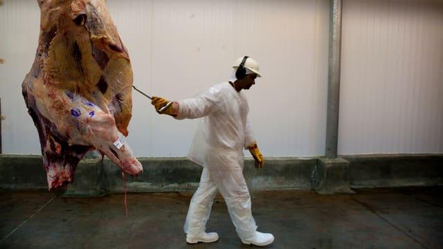 Ein Mann zieht eine tote Kuh hinterher.
