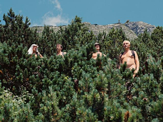 Vier Nacktwanderer stehen hinter einem Nadelgebüsch vor einer Felswand.