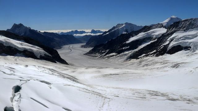 Blick vom Jungfraujoch auf den Aletschgletscher