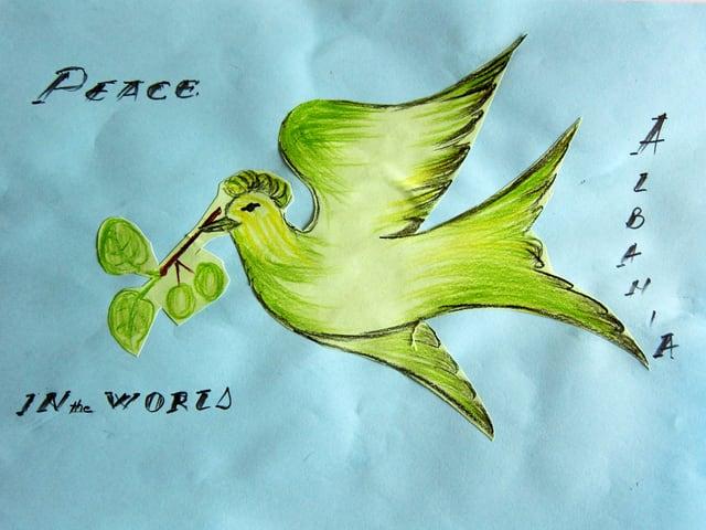 Zeichnung einer Friedenstaube mit den Worten «Peace in the World, Albania»