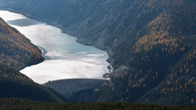 Purtret dal Lago di Livigno.