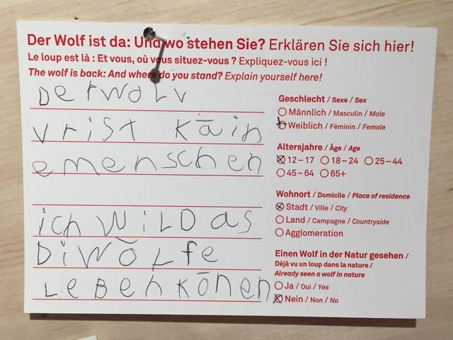 Sin ina paraid en il Museum alpin a Berna po mintgin dir tge ch'el pensa dal luf.