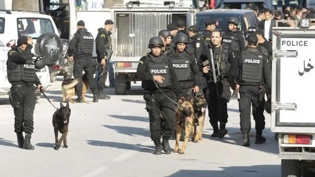 Polizia e gruppas spezialisadas vid tschertgar ils attentaders cun chauns en la citad da Tunis.