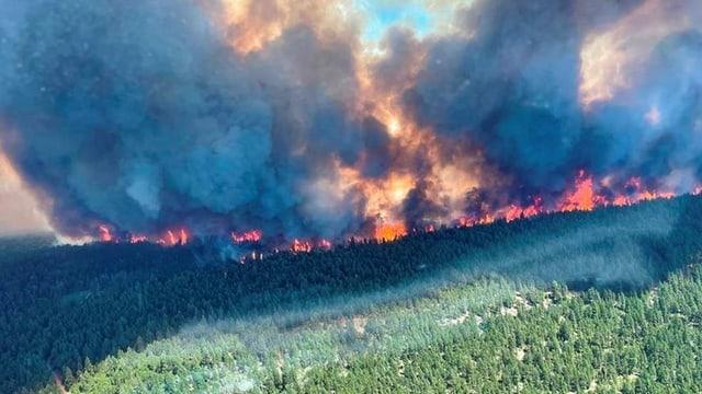 Rauch und Flammen am 29. Juni: Waldbrand am Sparks Lake im Regionalbezirk Thompson-Nicola in British Columbia.