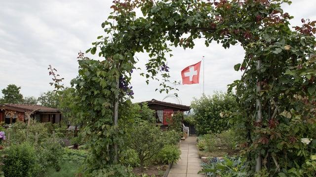Ein rosenumrankter Torbogen in einem Schrebergarten, im Hintergrund weht eine Schweizerfahne.