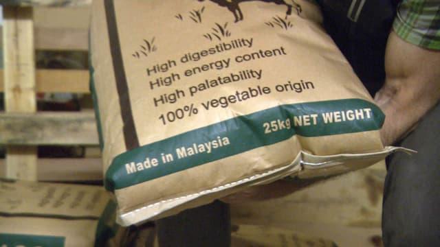 Video «Palmöl für Milchkühe, Markus Ritter, Italiens Überwachungsmaschinerie, Venezuela» abspielen