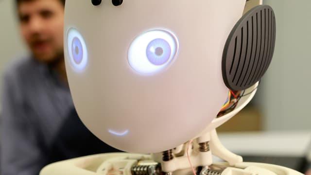 Roboy, ein an der Uni Zürich entwickelter humanoider Roboter.
