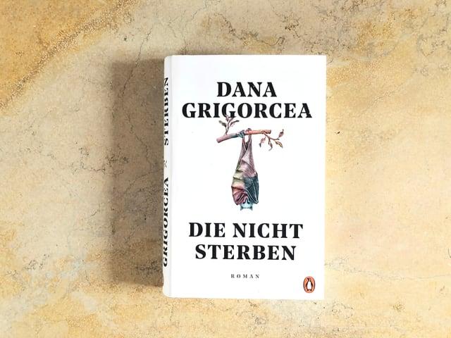 Der Roman «Die nicht sterben» von Dana Grigorcea liegt auf einer Marmorplatte