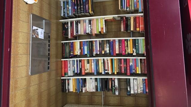 Aus der Telefonkabine im St. Galler Linsenbühlquartier wurde eine Tauschbörse für Bücher.