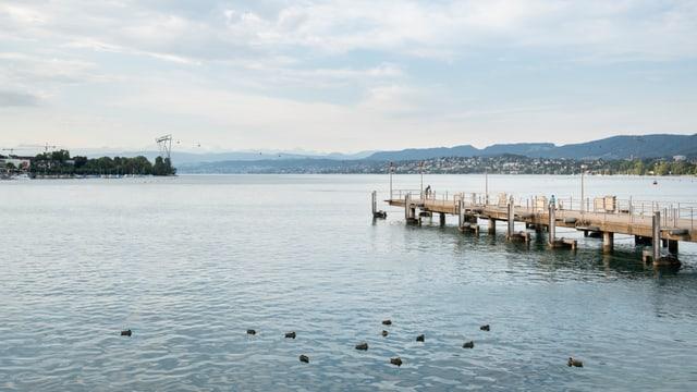 Sicht vom Zürcher Bürkliplatz: Die ZKB-Seilbahn führt vom Strandbad Mythenquai zur Blatterwiese.
