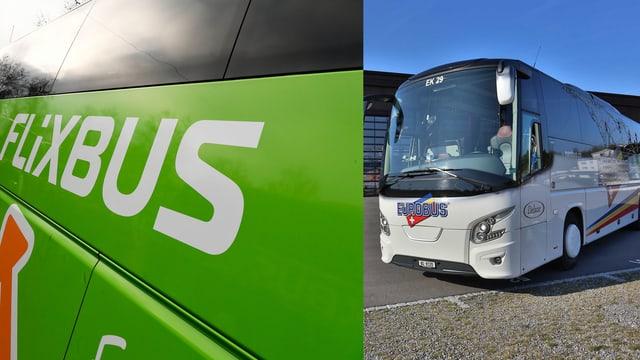 in flixbus ed in Eurobus in sper l'auter