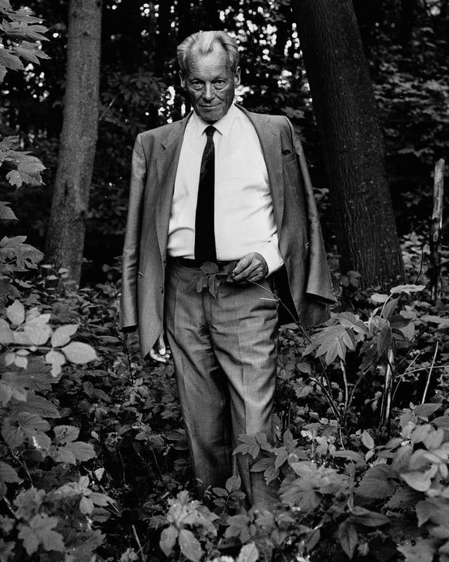 Ein Mann mit Anzug un Krawatte steht im Wald.