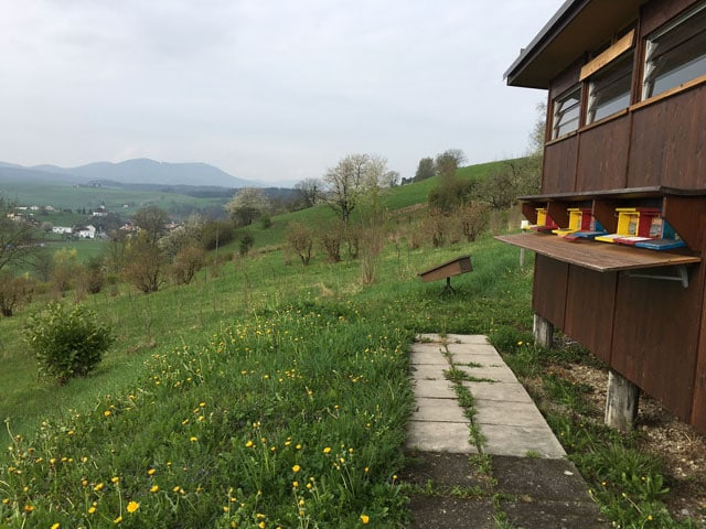 Bienenhaus mit Panorama.