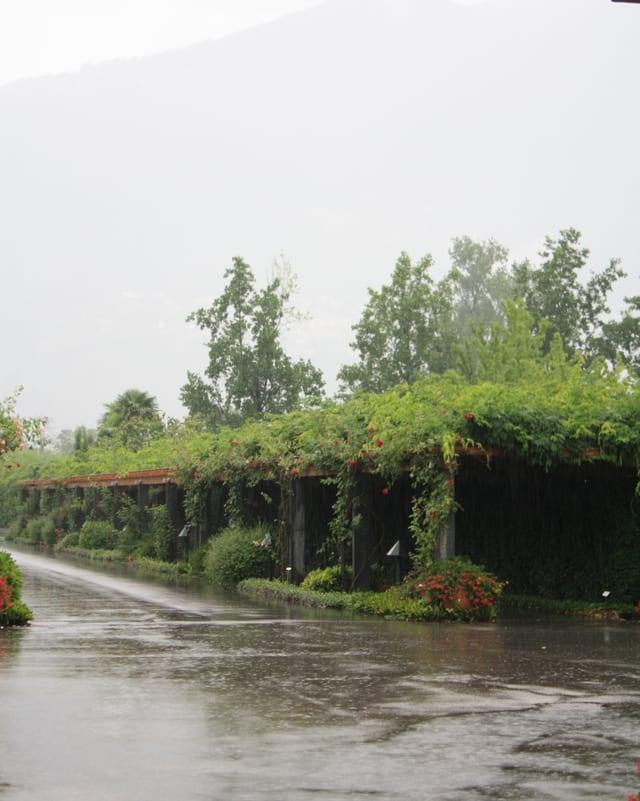 Starker Regen klatscht auf den Asphalt in Ascona