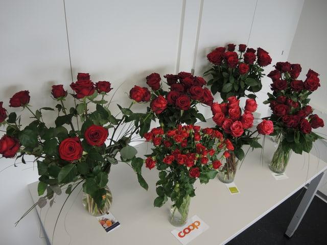 Übersicht, sieben Rosensträusse