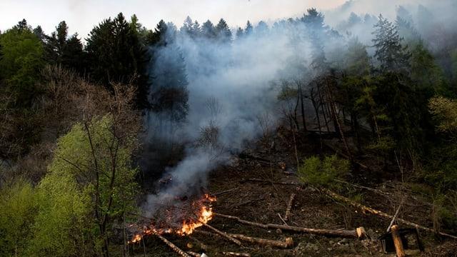Brennender Wald in Faido