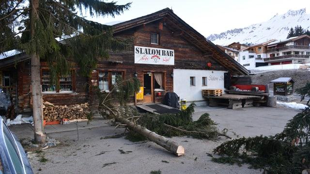 In pign derschì resgià en tocca avant la Slalom Bar a Valbella.