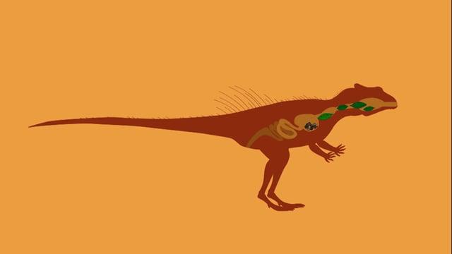Video «Ralph und die Dinosaurier: Yinlong (25/26)» abspielen