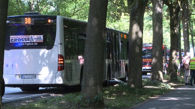 Linienbus am Strassenrand.