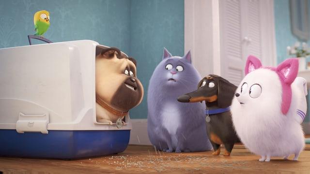 Szene aus einem Animationsfilm: Ein Mops schaut kauen aus einem Katzenklo. Eine Katze, ein Spitz, ein Wellensittich und ein Dackel schauen ihn angeekelt an.