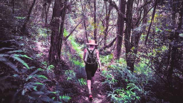 eine Frau läuft durch einen Wald