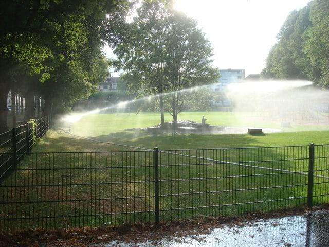 Rasensprenger in einem Park. Der Wasserstrahl ist in Richtung eines Baumes ausgerichtet.