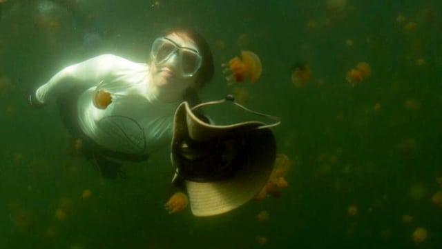 Frau mit Taucherbrille unter Wasser. Davor schwebt ein Hut und Quallen.
