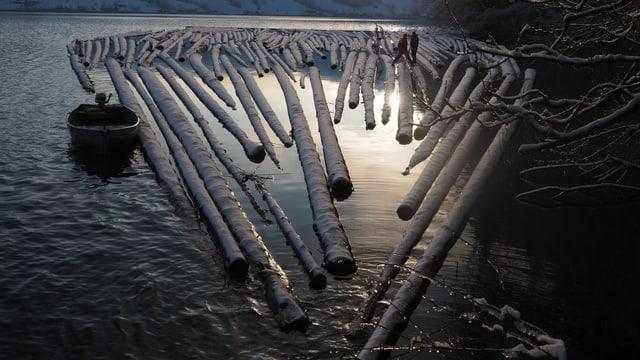 Das Floss aus Holzstämmen im Abendlicht