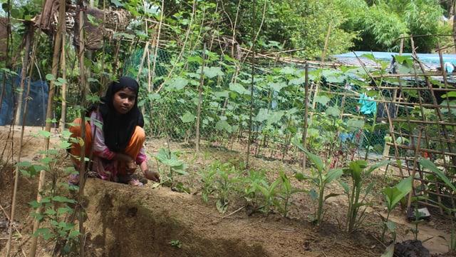 Mädchen auf einem Gemüsebeet in Bangladesch.