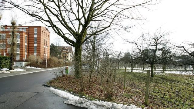 Im Rank ist eine der Zonen in der Stadt Zug, wo preisgünstige Wohnungen entstehen.