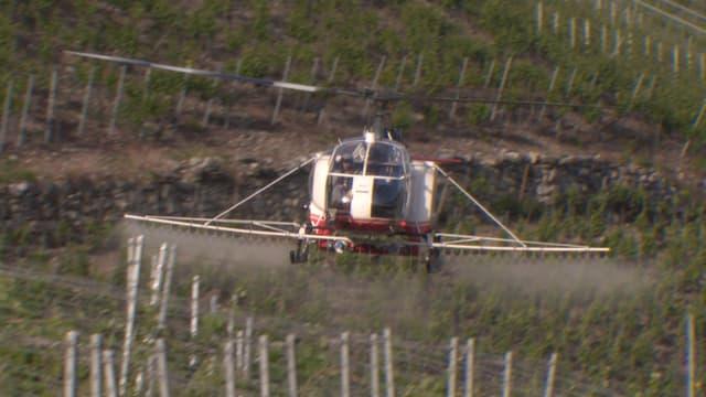 Video «Pestizide im Weinbau. Bevormundung von Mietern. Nagellack-Test.» abspielen