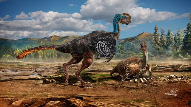 Natur & Umwelt Bizarre Dino Art in China entdeckt Wissen