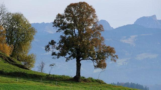 Ins Inventar sollen schöne oder kulturhistorisch wertvolle Landschaften, wie zum Beispiel die Gantrischregion.